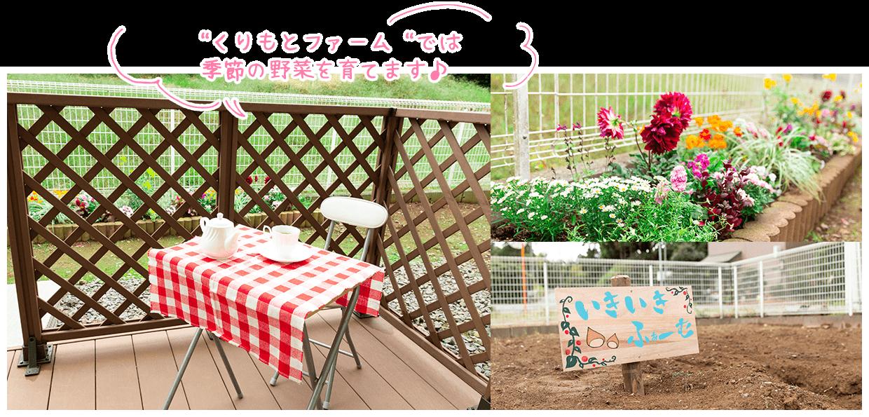 """画像:""""くりもとファーム""""では季節の野菜を育てます♪"""